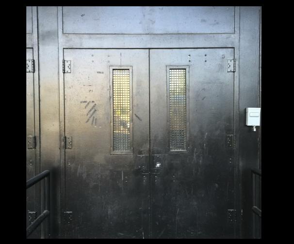Strawberry Mansions Door